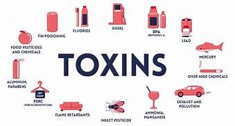Recognizing & Minimizing Environmental Toxins - November 7, 2019