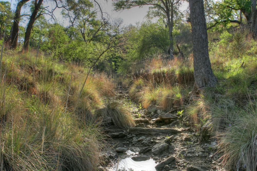 Cypress Valley-2.jpg