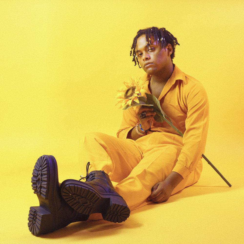 rovel yellow new.jpg