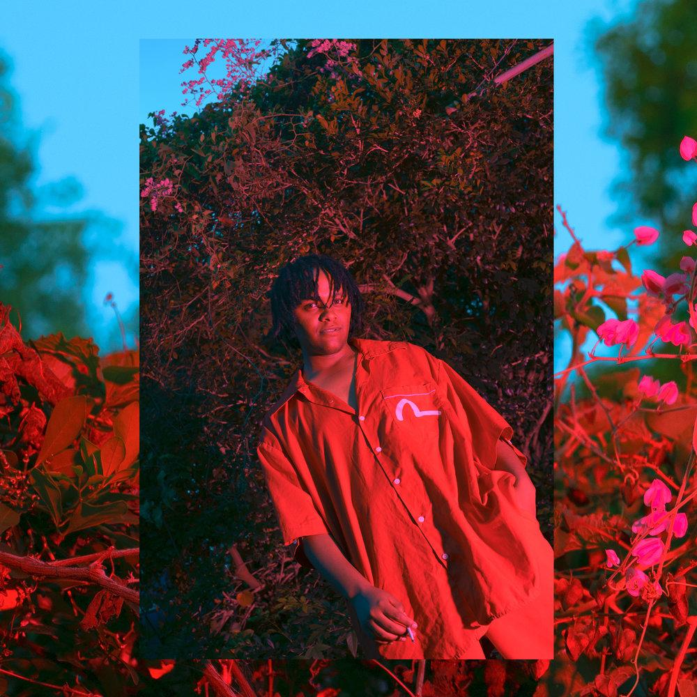 red rovel.jpg