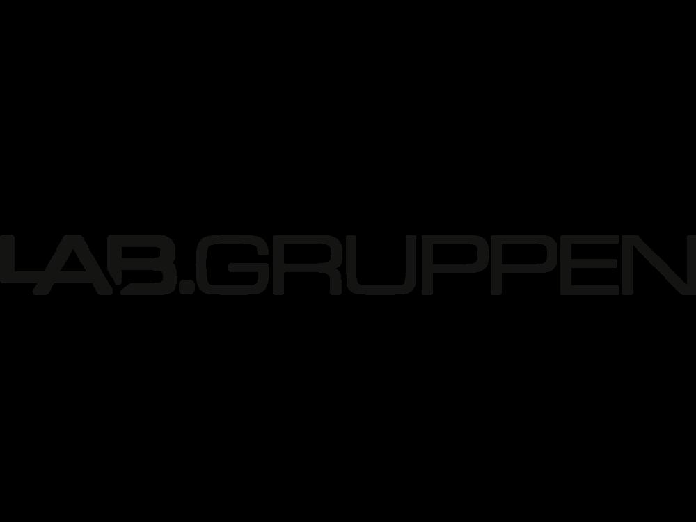 3390Lab_Gruppen_WEB_U.png