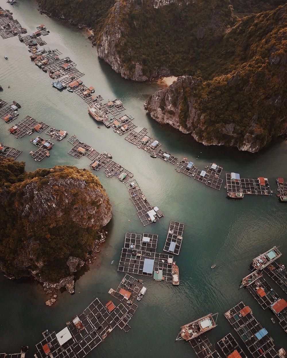 Vietnam, 2017.