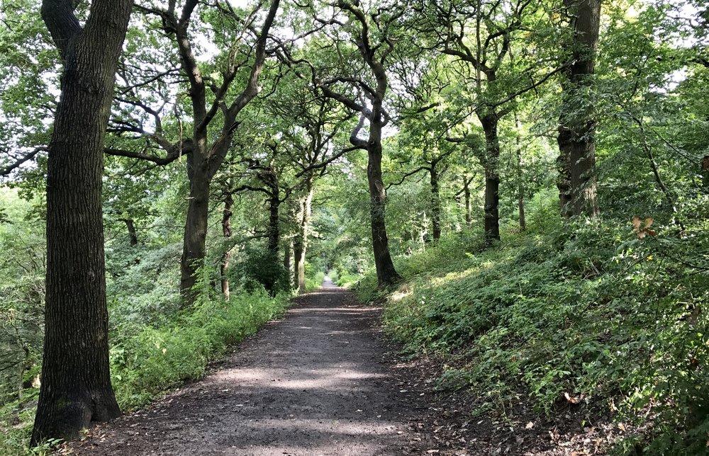 Woodhouse Ridge.jpg