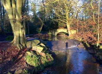 Meanwood Park (2).jpg