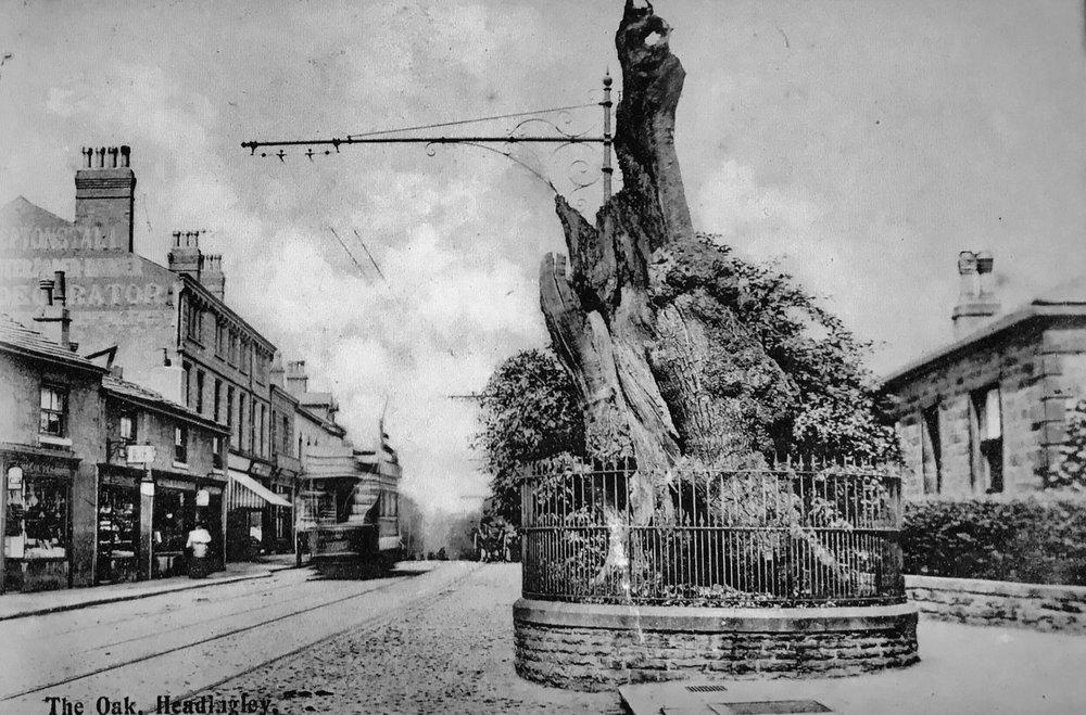 Shire Oak and Tram, circa 1905