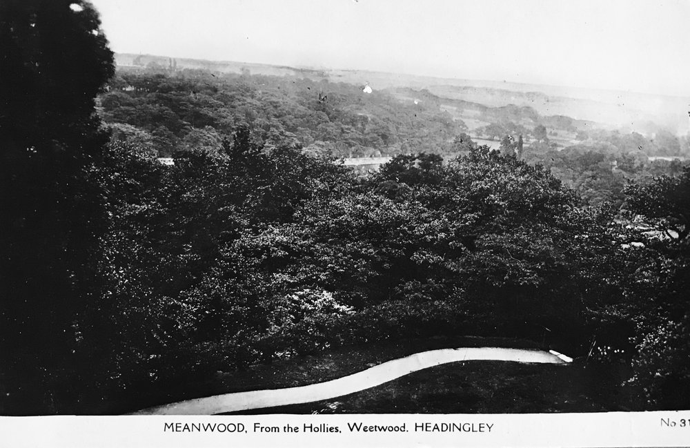 The Hollies towards Meanwood Valley