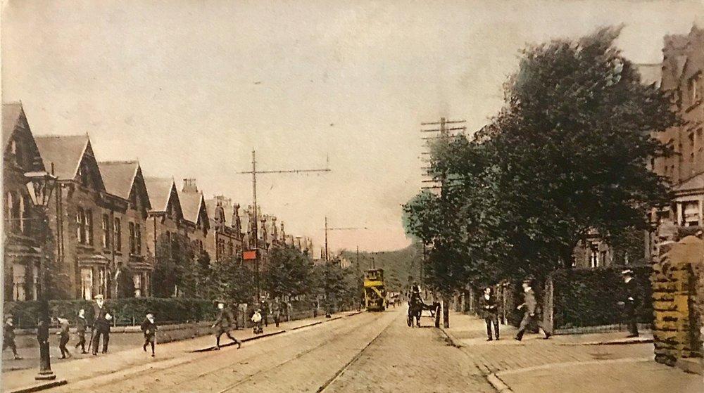 Cardigan Road