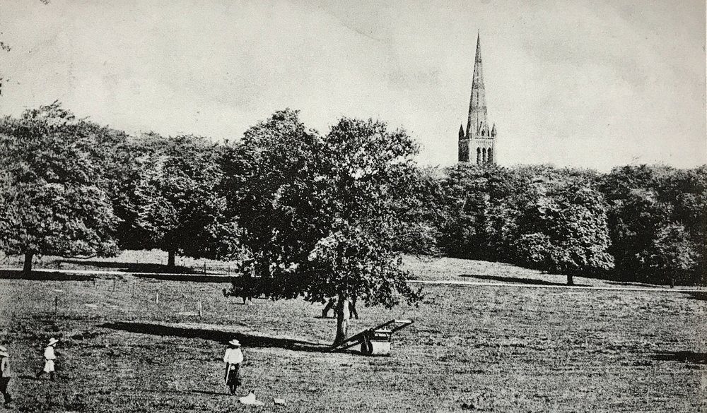 Beckett Park, view towards St Chad's and Churchwood, c1912