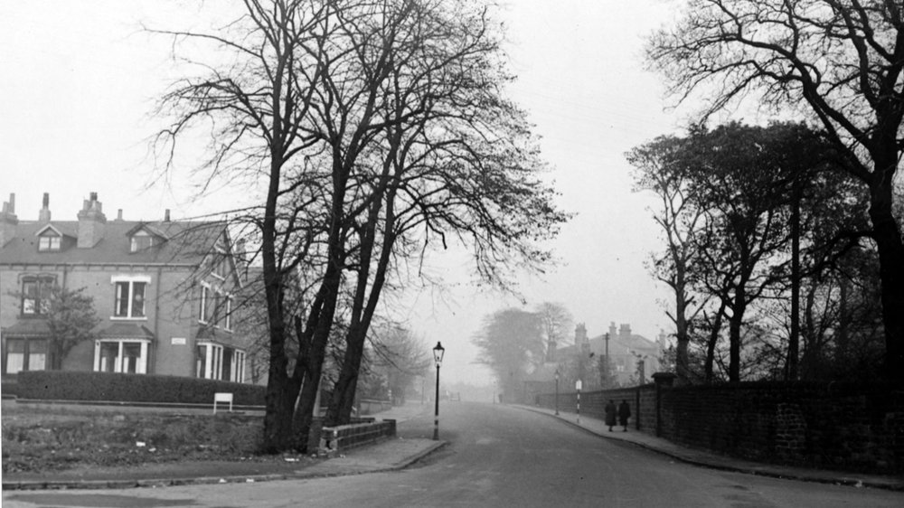 Kirkstall Lane, at Langdale Terrace