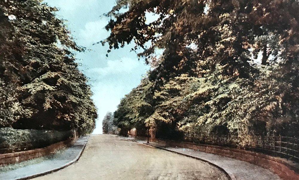 Shire Oak Road, undated