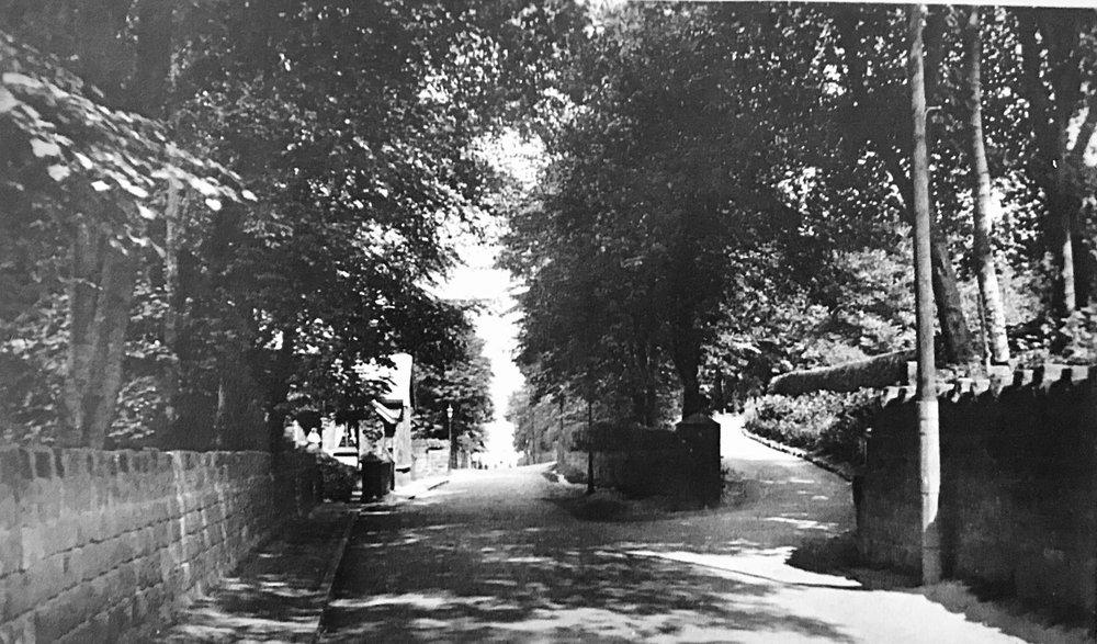 Wood Lane undated