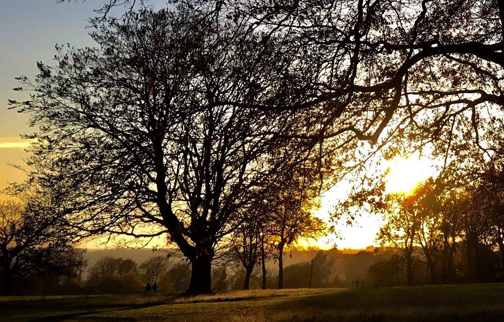 Beckett Park, towards Kirkstall © HP