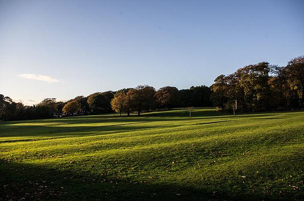 Ridge & Furrow, Beckett Park © AP