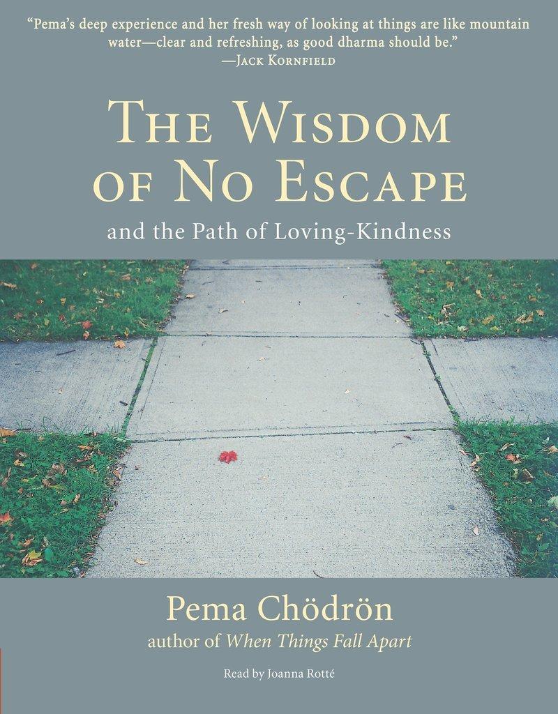 The Wisdom of No Escape- Pema Chodron