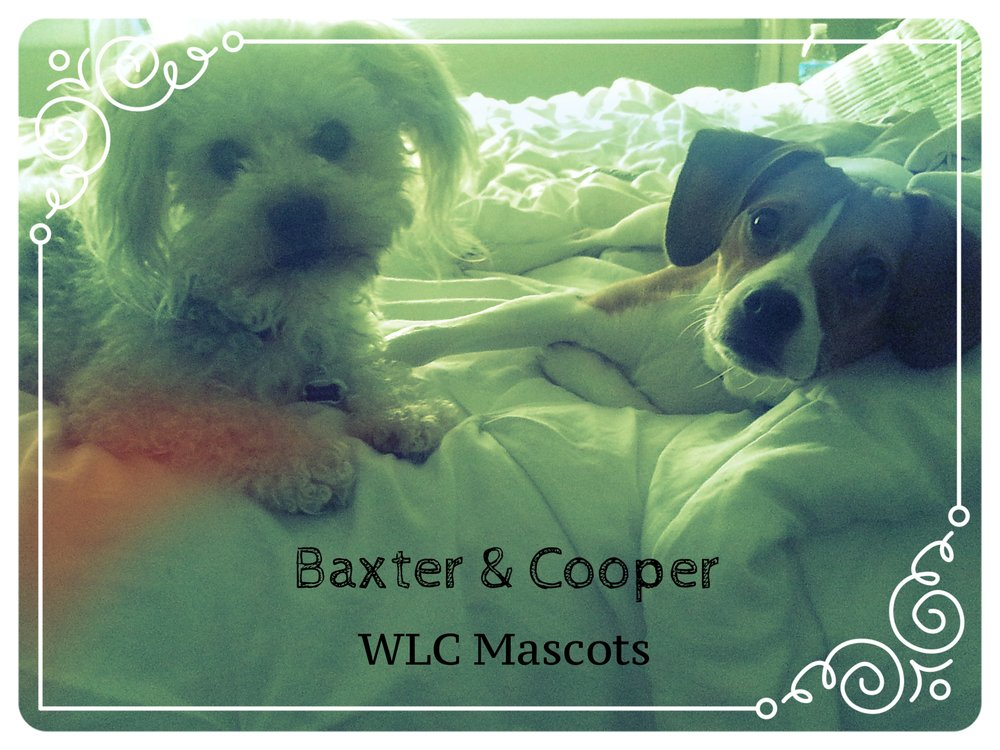 Baxter and Cooper.jpg