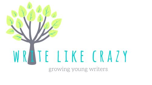 Write Like Crazy