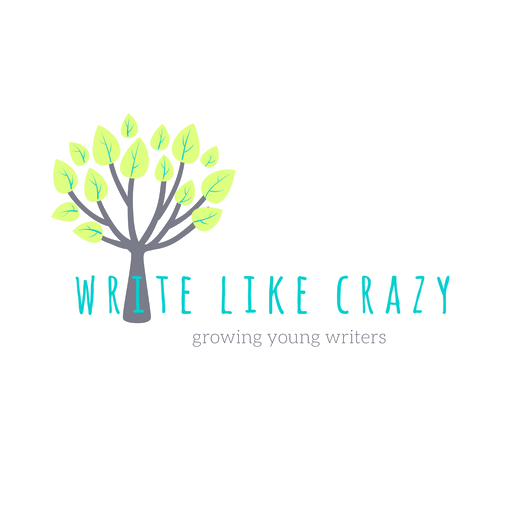Write Like Crazy