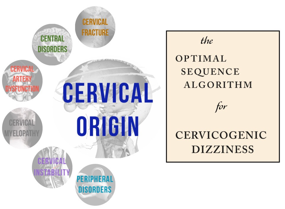 Cervicogenic Dizziness, Cervical Vertigo, Physiotherapy, Physical Therapy, Harrison Vaughan, Dizziness Cervical Spine, Danielle Vaughan