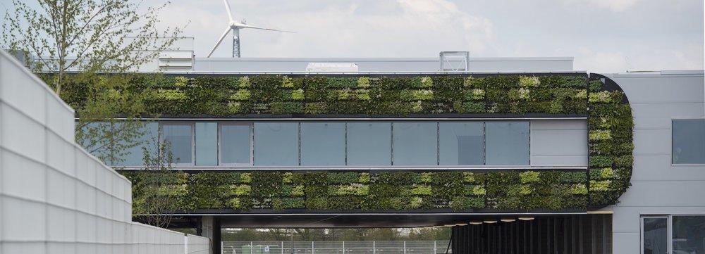 Green wall system - Nike, Laakdal Belgium