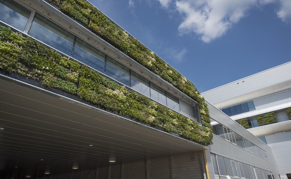 Nike Headquarters, Laakdal Belgium with living wall