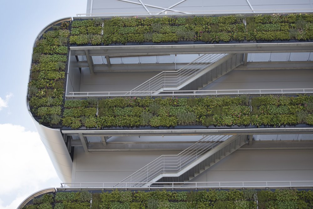 Green Wall System by Suite Plants