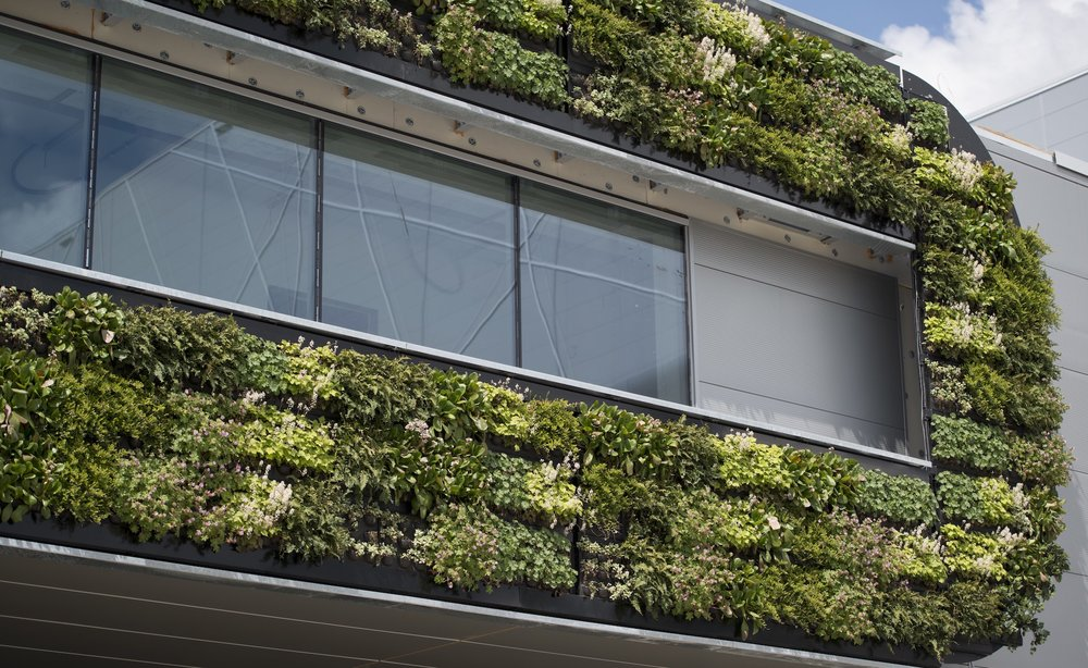 Plant Wall at Nike Headquarters - Architectural Ideas