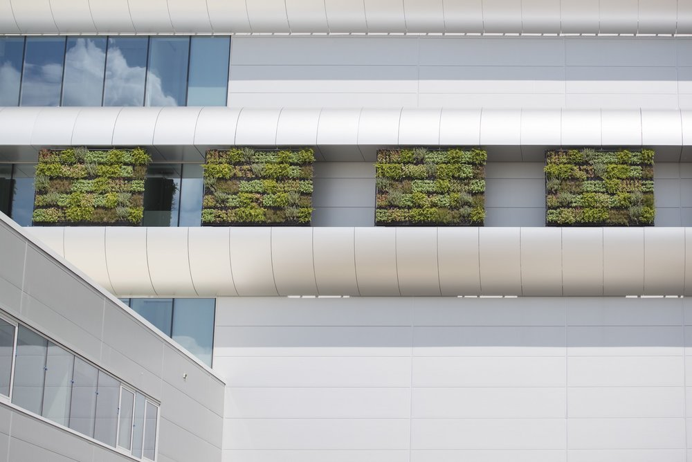 Green Wall Panels by Suite Plants