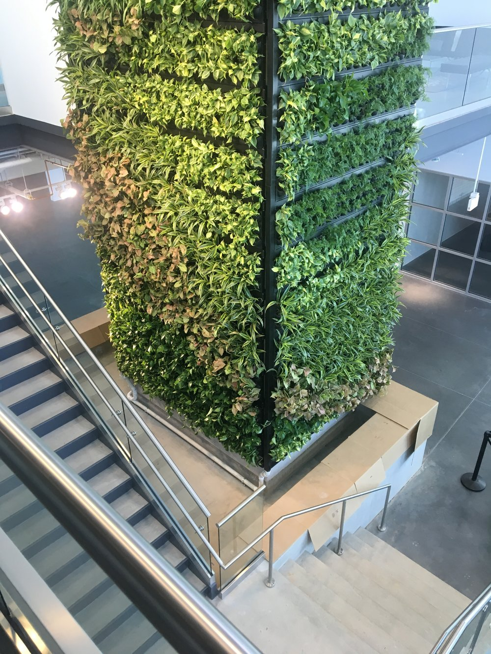 Greenwall systems for plant columns