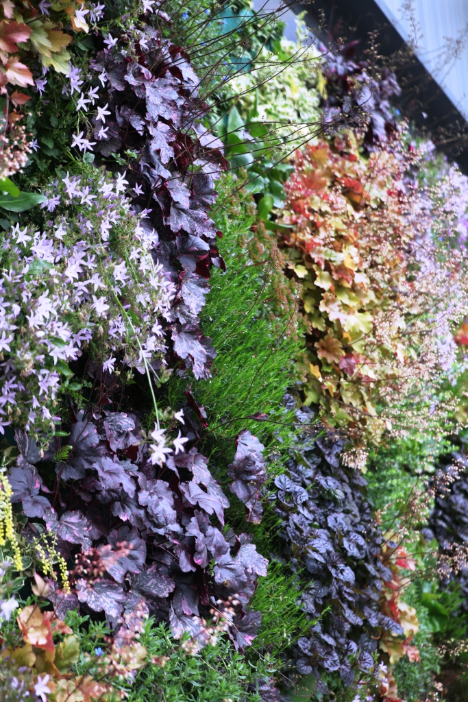 Flowering plant wall