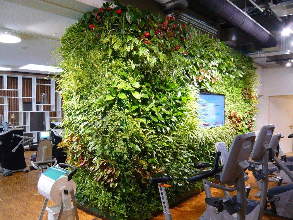 Indoor jungle interior design