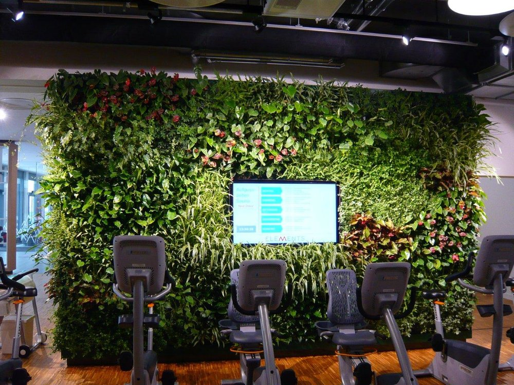Vertical Green Walls by Suite Plants