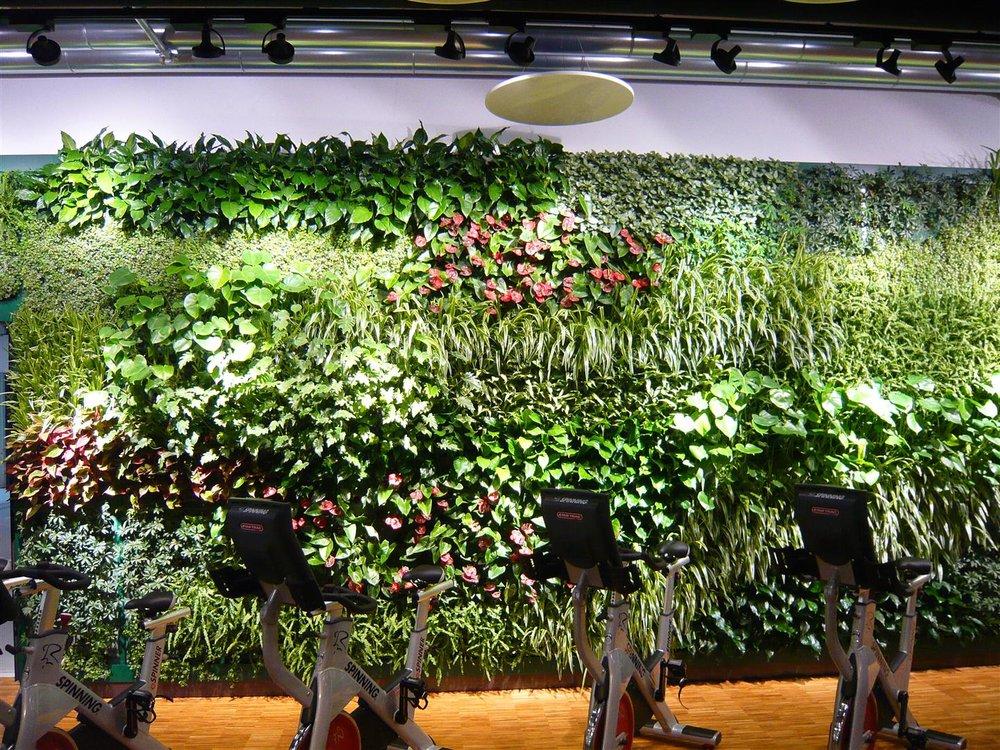 Indoor vertical garden system