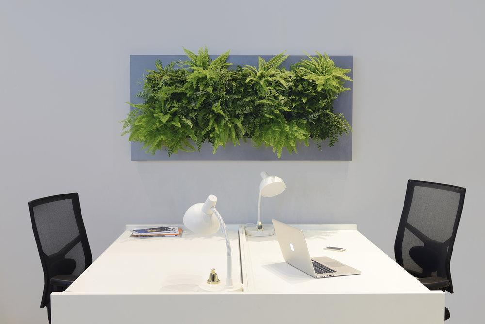 Living wall art for the modern office