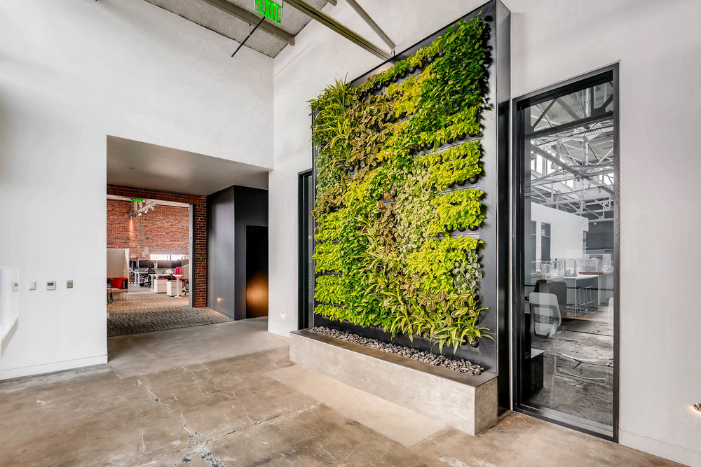 Living Wall Art in Architecture Firm