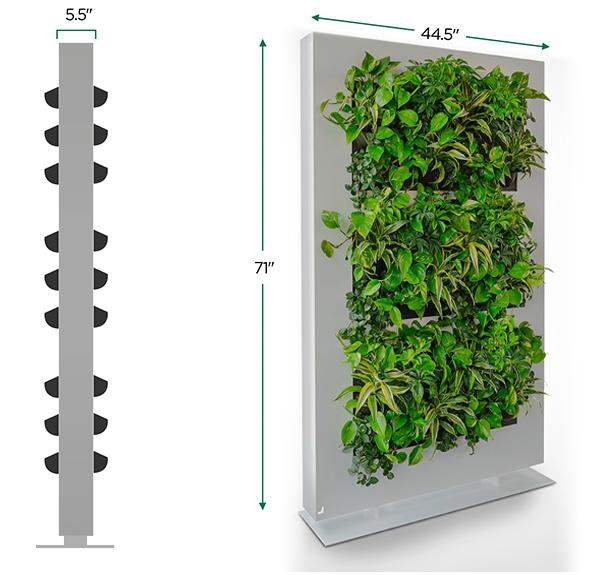 "Freestanding living plant room divider 71""h x 45""w"