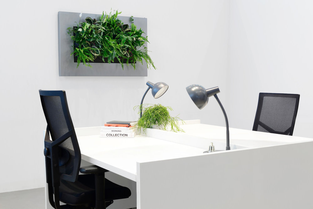 Easy to Install Living wall system