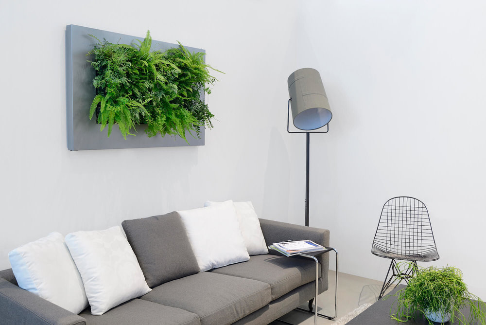 Wall Planter - Picture Frame