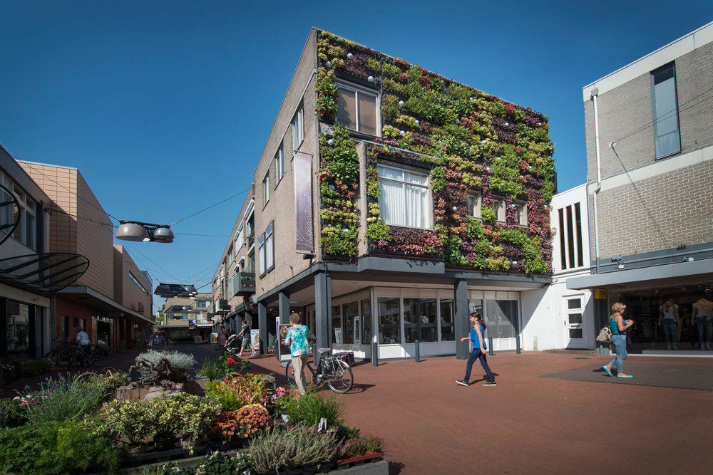 Colorful Exterior Living Wall by Suite Plants - Veghel, Netherlands