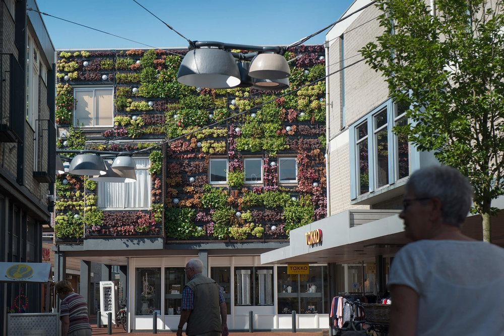 Living walls - Veghel, Netherlands