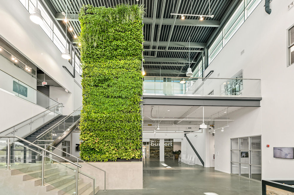 Large Column Living Wall Installation at Burkert US Headquarters - Charlotte, North Carolina