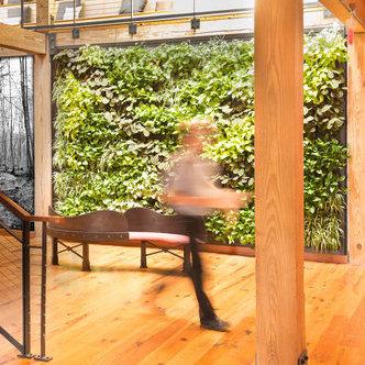 interior-plant-wall.jpg