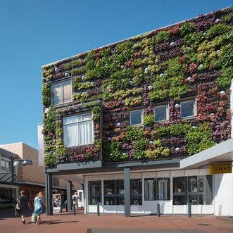 Outdoor Plant Wall in Veghel, Netherlands