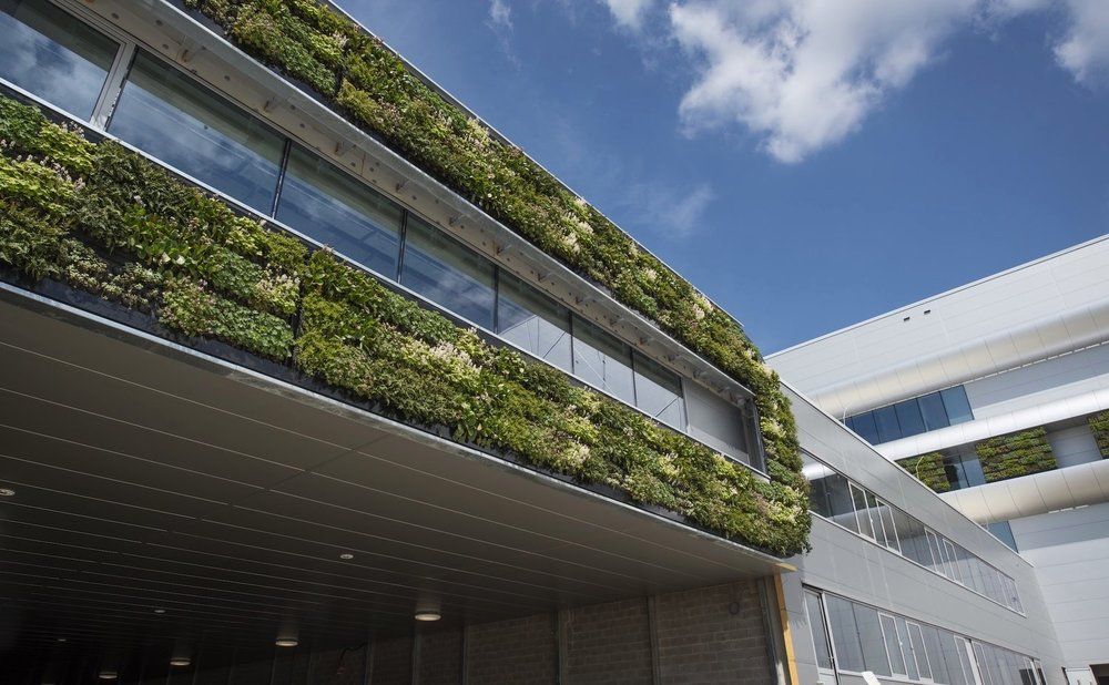Outdoor Living Wall at Nike's European Logistics Campus