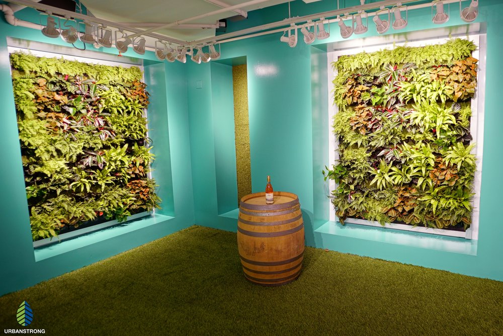 Custom Green Walls in Rosé Mansion - NYC Summer 2018