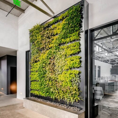 Indoor Living Wall for Davis Partnership Architects in Denver, Colorado