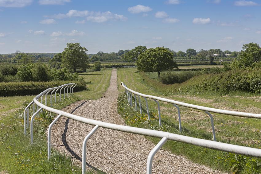 gallop1.jpg