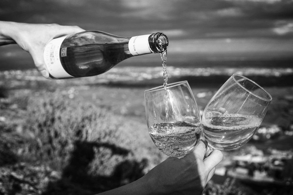 We exist to make European wines easily understood -