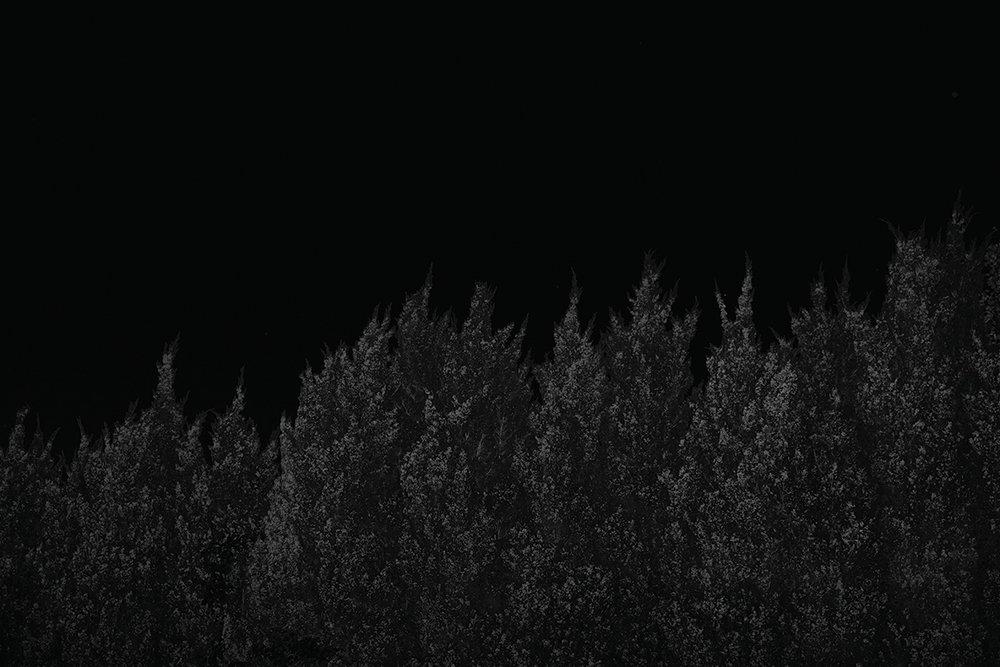 20160830_5905_1200sRGB.jpg