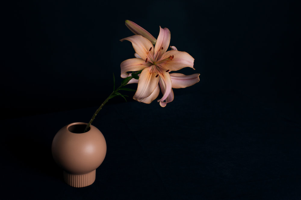 kathleen-barber-photography-lily-floral.jpg