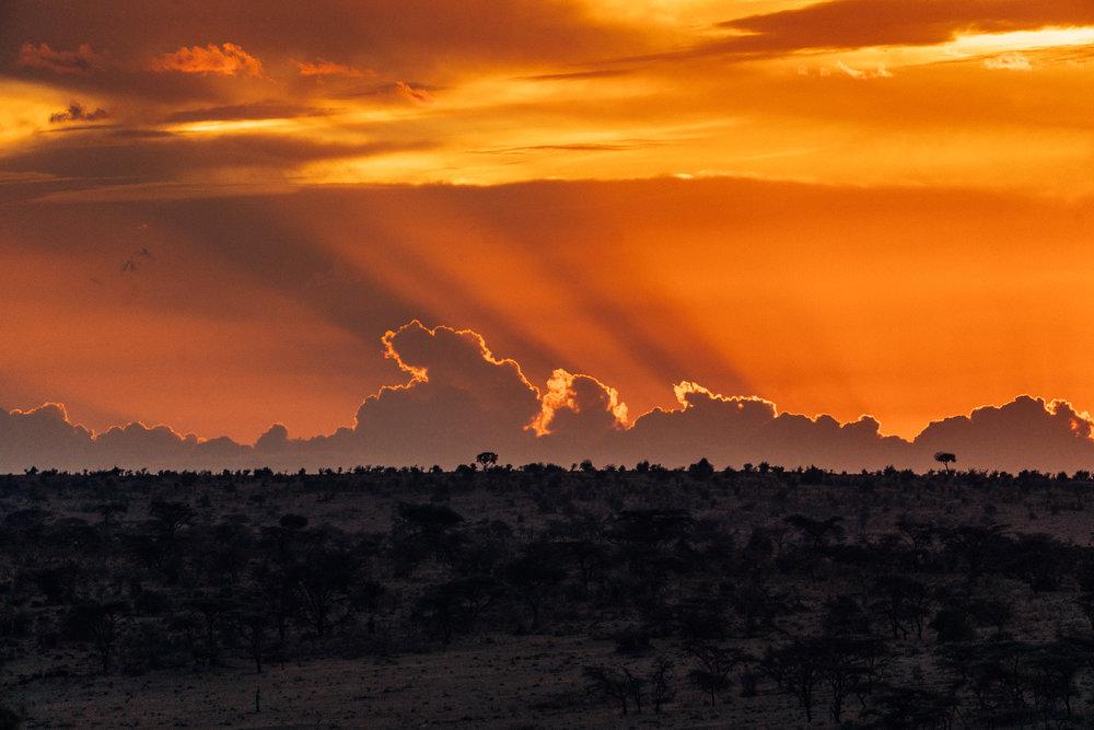 Maasai Mara Sunset - Kenya, Africa | Ph by Dave Krugman
